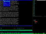 2013-02-08-solo-2150-jed